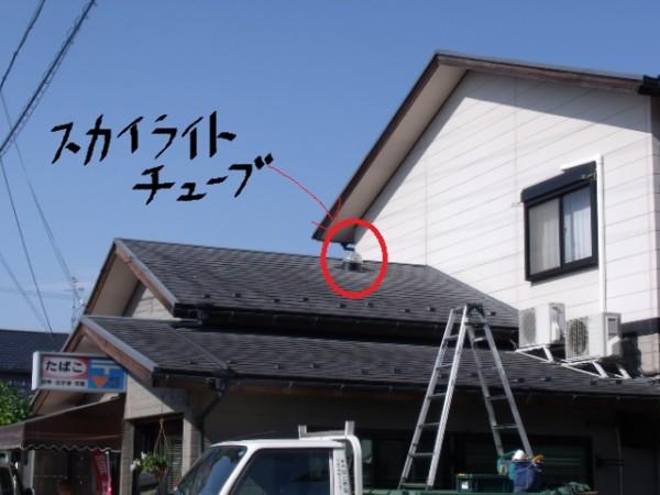 shiga8-01